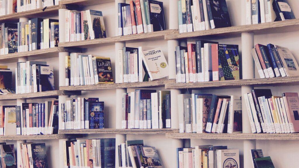 Bokhyllor med böcker